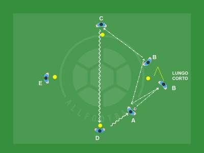 Pulcini impariamo la circolazione palla